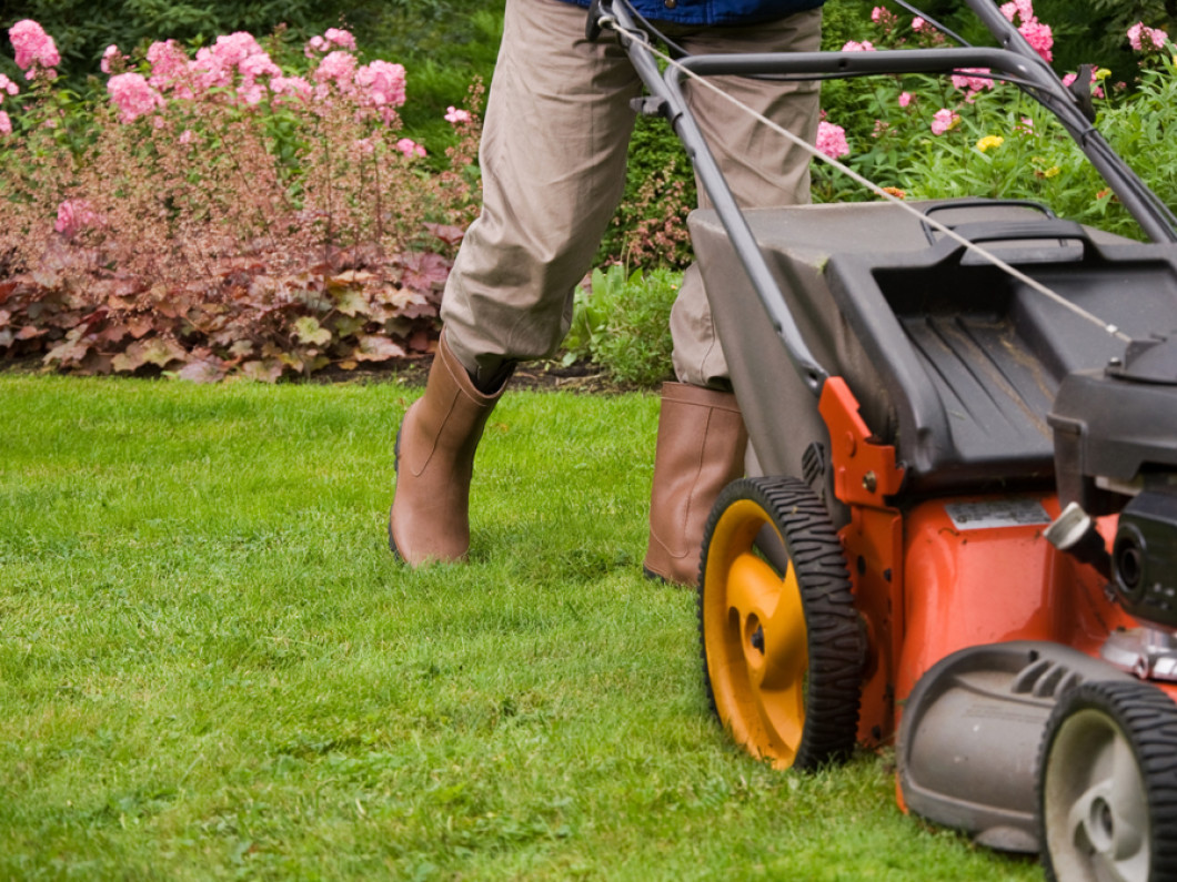 Your Lawn Won't Stay Green on Its Own